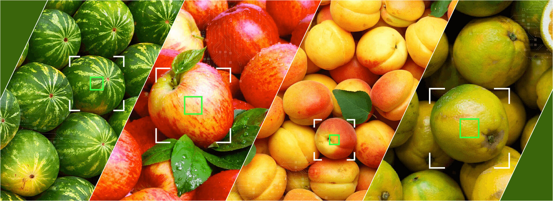 Visual quality inspection of fruits